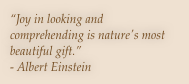 """Joy in looking and comprehending is nature's most beautiful gift.""  - Albert Einstein"